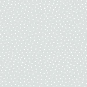 Tissu Andover A 9166 C2 gris lemillepatch