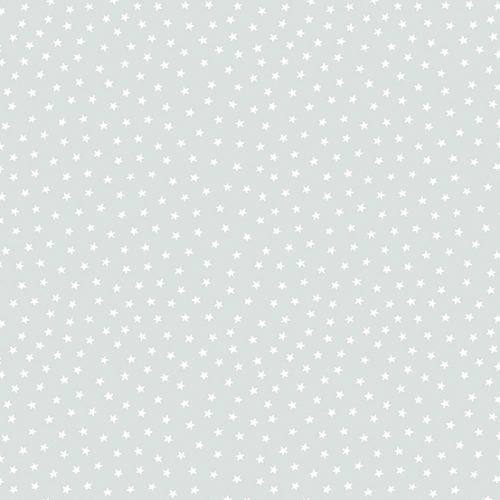 Tissu Andover – A 9166 C2