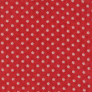 Tissu Moda – 14867 13