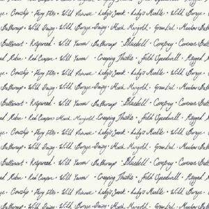 Tissu Windham 52322-2 blanc lemillepatch