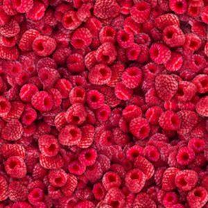 Tissu Quilting Treasures 28450-MP rose lemillepatch