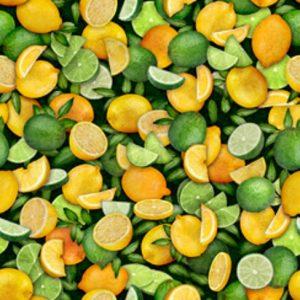 Tissu Quilting Treasures 28461-SG vert lemillepatch