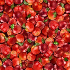 Tissu Quilting Treasures 28470-RS rouge lemillepatch